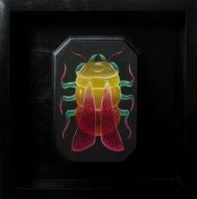 Bacterial-Treat-1