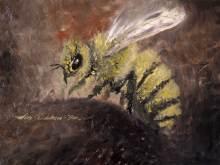 Alex-Sandulescu-_-the-bee