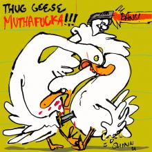 GoosevsSwan
