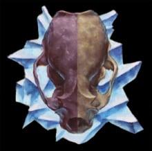 Otter Crystal
