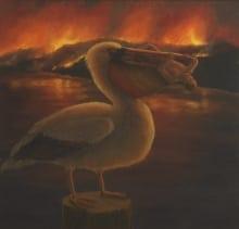 pelican jpeg copy
