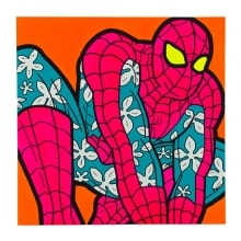 The_Speczacular_Spiderman_Zachary_Friedberg_web