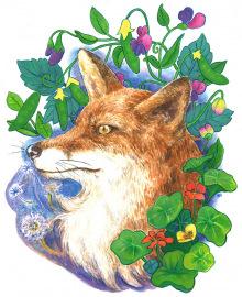 Fox-and-Peas