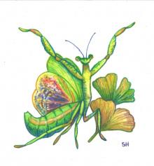 Mantis-Style