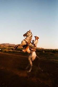 Angela Pailevanian - Horse Tricks