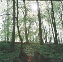 Hannah-Kozak_29-April-Bedzin-Jewish-Cemetery-01140001