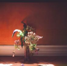 Hannah-Kozak-Amamos-tantos-a-las-flores-que-las-matamos---We-love-flowers-so-much-we-kill-them-Number 16_April-25,-2018