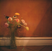 Hannah-Kozak-Amamos-tantos-a-las-flores-que-las-matamos-We-love-flowers-so-much-we-kill-them-Number 17_May-23,-2018