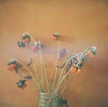 Hannah-Kozak-Amamos-tantos-a-las-flores-que-las-matamos-We-love-flowers-so-much-we-kill-them-Number 7_December-09,-2017
