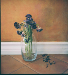 Hannah-Kozak-Amamos-tantos-a-las-flores-que-las-matamos-We-love-flowers-so-much-we-kill-them-Number 8_February-14,-2018