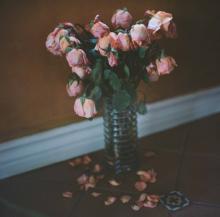 Hannah-Kozak-Amamos-tantos-a-las-flores-que-las-matamos---We-love-flowers-so-much-we-kill-them _Number 2_February-24,-2017