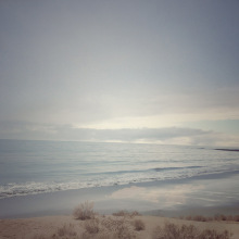 Alexandra-DeFurio-Venice-Beach-Palm-Desert