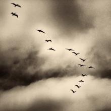 Haldeman_-Small-Matters-II_Sky