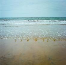 Hannah_Kozak_7-La-Jolla-Sandpipers-Sept-5-2016