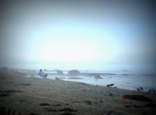 RichardSChow-California-Love1-03