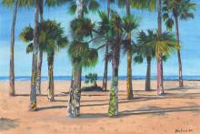 9.-Alex-Leco-Venice-Palms