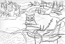 grumpy cat in swamp of sadness