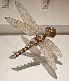 Dragonfly 1.0