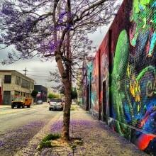 richardson-banks-melissa-purple-tree-and-street-art-arts-district