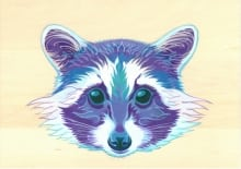 Raccoon Spirit small