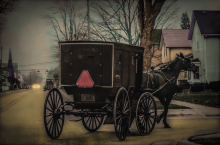 AmishBuggy2WendyLittle_Hive